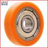 Roller-Fußrolle dreht Skateboard-Räder
