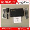 Receptor satélite da caixa F5 de DVB-S