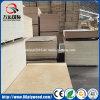 Madeira compensada comercial do núcleo do Poplar/vidoeiro/folhosa/madeira compensada Shuttering para a mobília e a construção