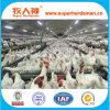 Matériel automatique d'aviculture d'ensemble complet pour le poulet d'éleveur