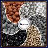 Alkalisches Wasser MineralOrp Negtive mögliche keramische Kugel