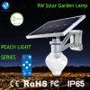 9W geïntegreerd Ce keurde de ZonneLamp van de Tuin met lithium-IonenBatterij goed