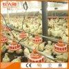 Maquinaria auto de la granja avícola para el criador con diseño profesional