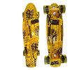 Complet Rétro Girl Boy Cruiser Mini Long Skateboard Poisson 22 ''