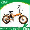 20 بوصة يطوي درّاجة كهربائيّة سمين
