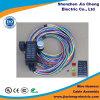 Asamblea de cable del harness del alambre de la aplicación del automóvil de la alta calidad