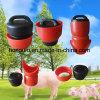 Fiche d'engrais de porc pour des pièces de système de boue de ferme de porc