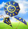 Special Wooden Umbrella