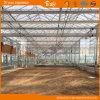 Planting 정원 Fruits&Vegetables를 위한 상업적인 Glass Greenhouse