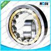 SKF sondern Reihen-zylinderförmiges Rollenlager Nu2330, Nup230, N2330, Nj232 aus