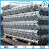 Qualität HDG Steel Pipe für Water Supply