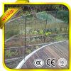Barandilla de /Stair de los pasamanos del balcón de los pasamanos del vidrio laminado/suelo decorativos de las escaleras