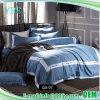 Insiemi durevoli gemellare di lusso del coperchio della trapunta della camera da letto