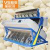 Uitstekende Hoge Output 384 Kanalen 6 van de Kwaliteit Macadamia van Vsee van de Manieren van de Dia de Machine van de Sorteerder van de Kleur van Noten CCD