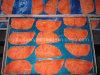 Amigo Slicedroid de color salmón de AnFrozen 2.2 mini 7  MEDIADOS DE con la cámara EC18