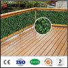 Decoration domestico Artificial Plastic Boxwood Pick Panels per il giardino