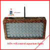 セリウム及びRoHSの熱い販売LEDのプラント照明