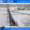 الصين [كنفور بلت] باردة مقاومة مطاط