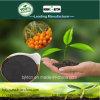 Agente microbico del carbone di legna di bambù del fertilizzante di Kingeta per il semenzale