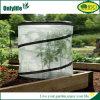 Serre chaude instantanée de tissu de PE pour de petits centrales et arbustes