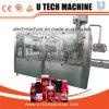 Las botellas de PET para bebidas de jugo de máquina de llenado de botellas