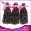 7A Virgin Kinky brasiliano Curl Human 100% Extension Hair