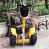 Les scooters électriques rapides pensant le char électrique folâtre le scooter