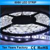 striscia flessibile impermeabile dell'indicatore luminoso di 12V SMD 5050 LED