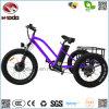 500W脂肪質のタイヤ3の車輪電気浜のバイク