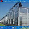 Qualität kundenspezifisches Glas-/PlastikFilm/PC Blatt-Gewächshaus
