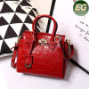 Prezzo all'ingrosso 2017 delle donne del sacchetto di Tote del cuoio della borsa dello stilista Emg4851