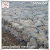Landschaftsgestaltung von Gabion/Rock Gabions für Construction