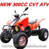 300CC CVT CEE ATV (MC-377)