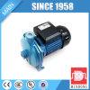 Pompe de Rotor en acier inoxydable CPM158
