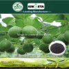 Kingeta migliora il fertilizzante composto basato carbonio NPK 22-7-11 della microflora del terreno