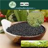 Il carbonio di Kingeta ha basato il fertilizzante composto NPK 8-6-18 per il raccolto