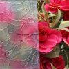 Limpar o vidro com padrões de vidro com padrões de cor