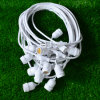 100m LED Belt Light Festoon Light für Street/Park Decoration