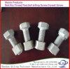 Norme d'exportation de norme internationale d'osmose de vide de placage de poudre de HDG (IMMERSION chaude galvanisant)