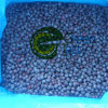 Neue Getreide-IQF gefrorene wilde Blaubeere