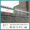 Hot Dipped Galvanized High Security anti- Climbing barrier spike