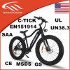 Lithium-Batterie-elektrisches fettes Fahrrad