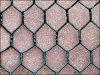 Galvanized Netting Hexagonal Wire Mesh Chicken Wire Mesh Manufactures