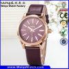 Montre classique de marque de montre d'alliage fait sur commande d'affaires (WY-129B)