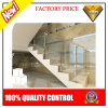 Barandilla de la escalera del acero inoxidable de la alta calidad con el vidrio (JBD-D4)