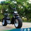 trotinette gordo de Citycoco do pneu 1200W, trotinette elétrico 60V de Harley