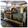 Biogas-Motor-Generator industrielle Generator-Standardmontage-Biogas-Kraftwerk-China-Lvhuan 250kw für Haushalts-und Tierabfall