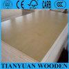 base del álamo de la madera contrachapada del abedul del grado de la Fábrica-Venta C/D de 12m m