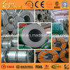 AISI Stainless Frío-rodado 304L Steel Coil