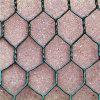 PVCによって塗られる熱い浸された電流を通された六角形の金網(工場及び輸出業者)